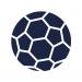 PSG Handball - PAUC
